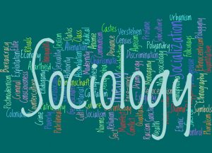 Recent News Related to Canadian Sociology and Anthropology